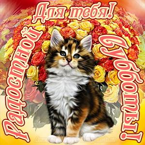 Открытка с котиком желающим радостной субботы