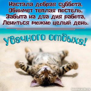 Картинка с прикольным котенком и пожеланием на субботу