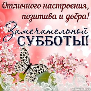 Красивое пожелание замечательной субботы с бабочкой