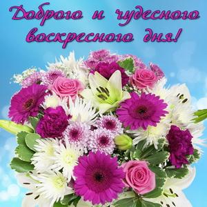 Красивый букет цветов на воскресный день