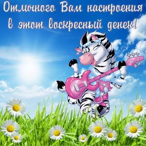Зебра с гитарой танцующая на травке