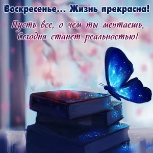 Синяя бабочка и пожелание к воскресенью