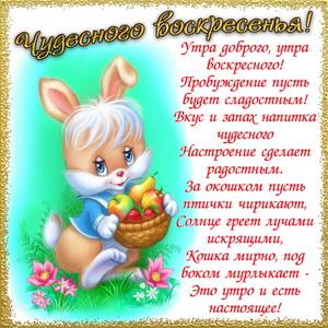 Зайчик и пожелание чудесного воскресенья