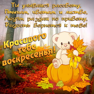 Медвежонок и пожелание красивого воскресенья