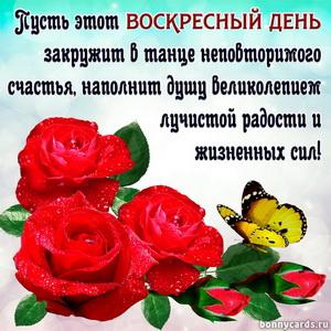 Картинка с розами и милым пожеланием на воскресенье