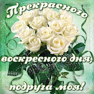 Открытка для подруги с розами в воскресный день