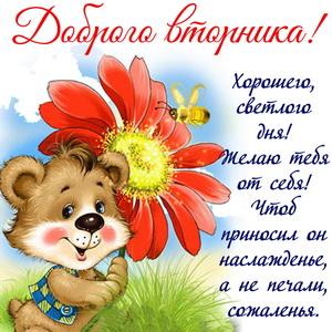 Мишка с цветком желает доброго вторника