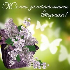 Красивая картинка с цветами в корзине