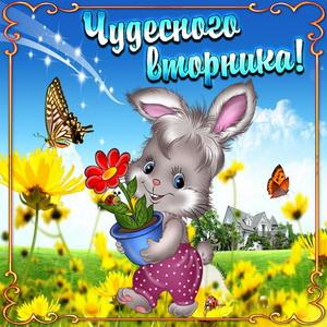 Кролик с цветочком в красивой рамке