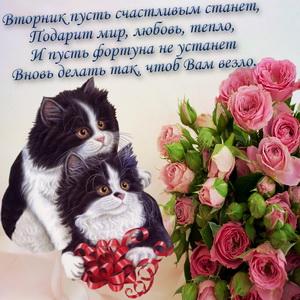 Картинка с милыми котиками и букетом роз