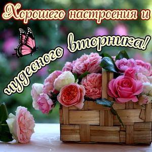 Корзина роз для хорошего настроения