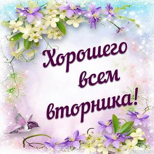 Пожелание хорошего вторника на красивом фоне с цветами