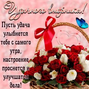 Открытка с корзиной роз и пожеланием удачного вторника