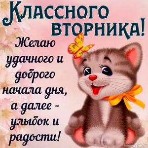 Картинка с пожеланием классного вторника от милого котика