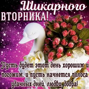 Картинка с букетом роз и пожеланием на шикарный вторник
