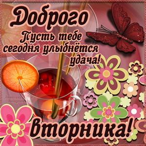 Яркая картинка с чаем и пожеланием доброго вторника