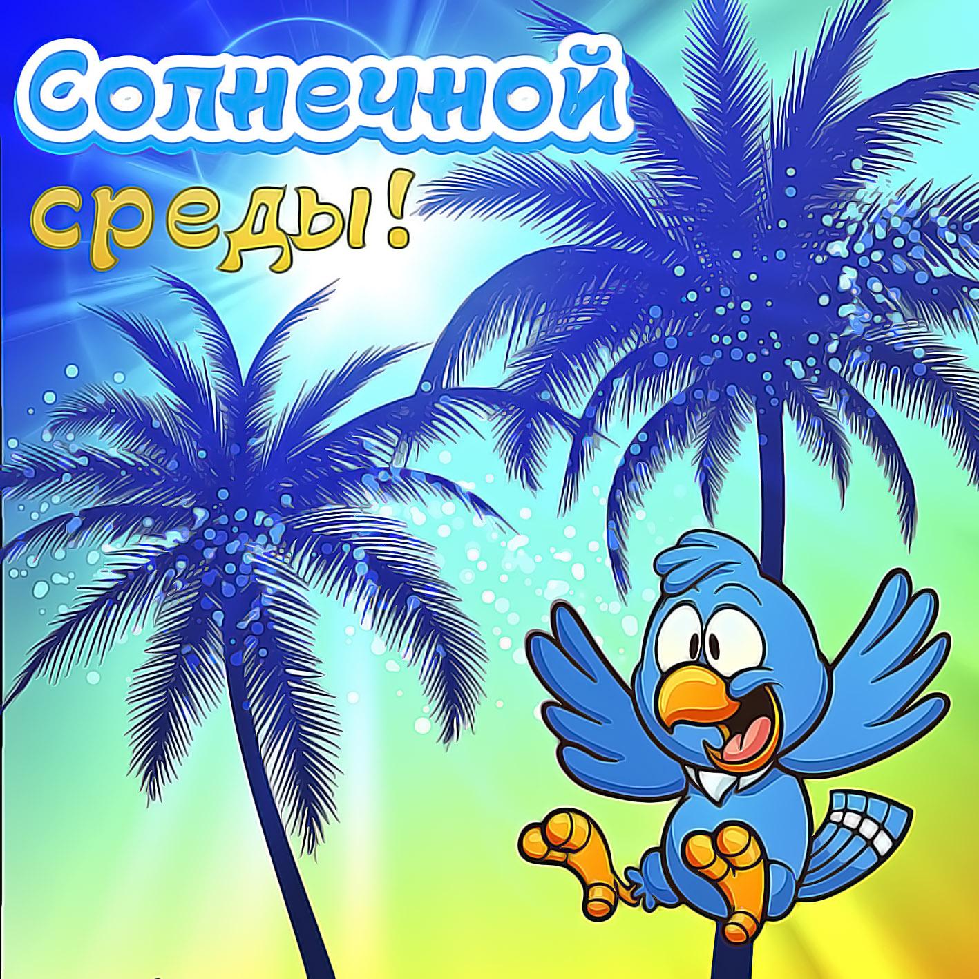 Картинка с пальмами и попугаем на среду
