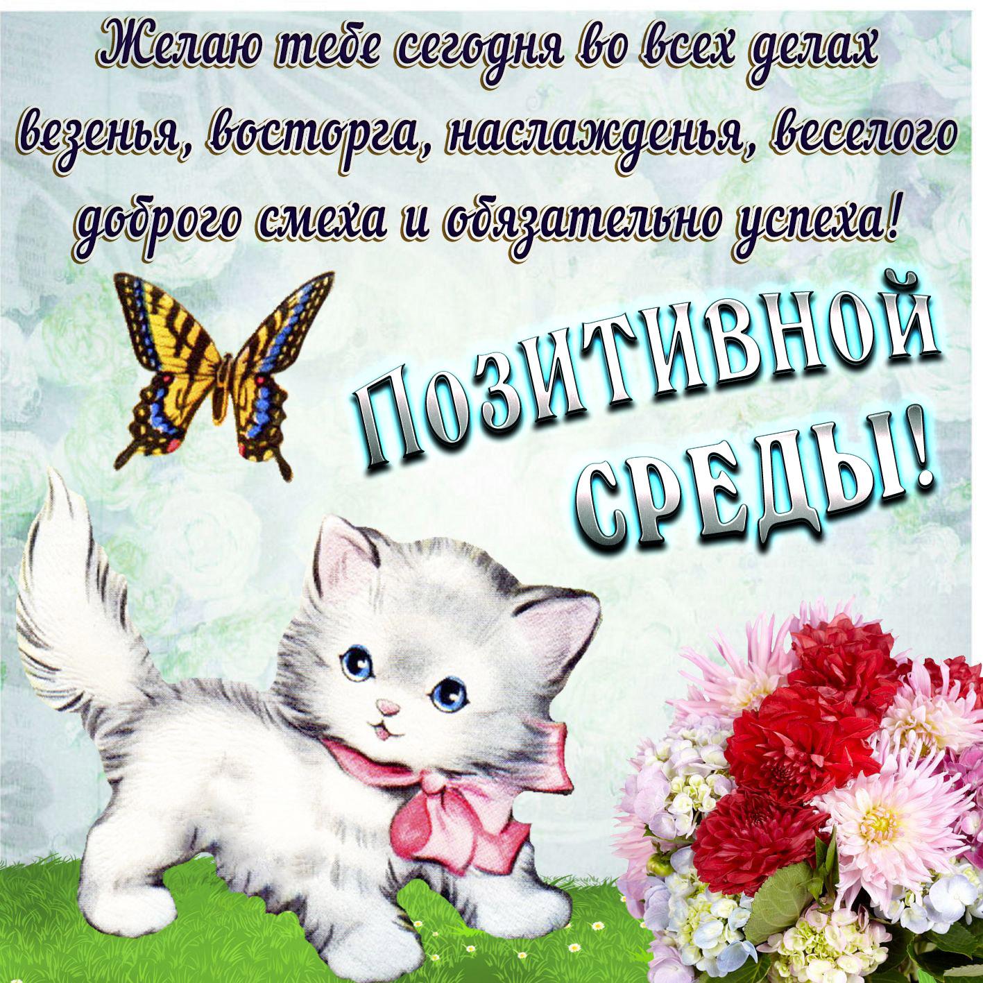 Подписать маленькую, открытки с пожеланиями хорошего дня с котятами