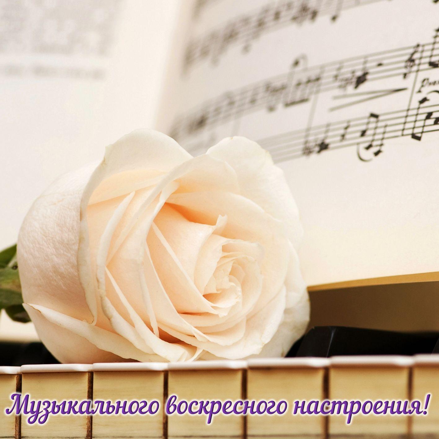 Музыкального воскресного настроения!