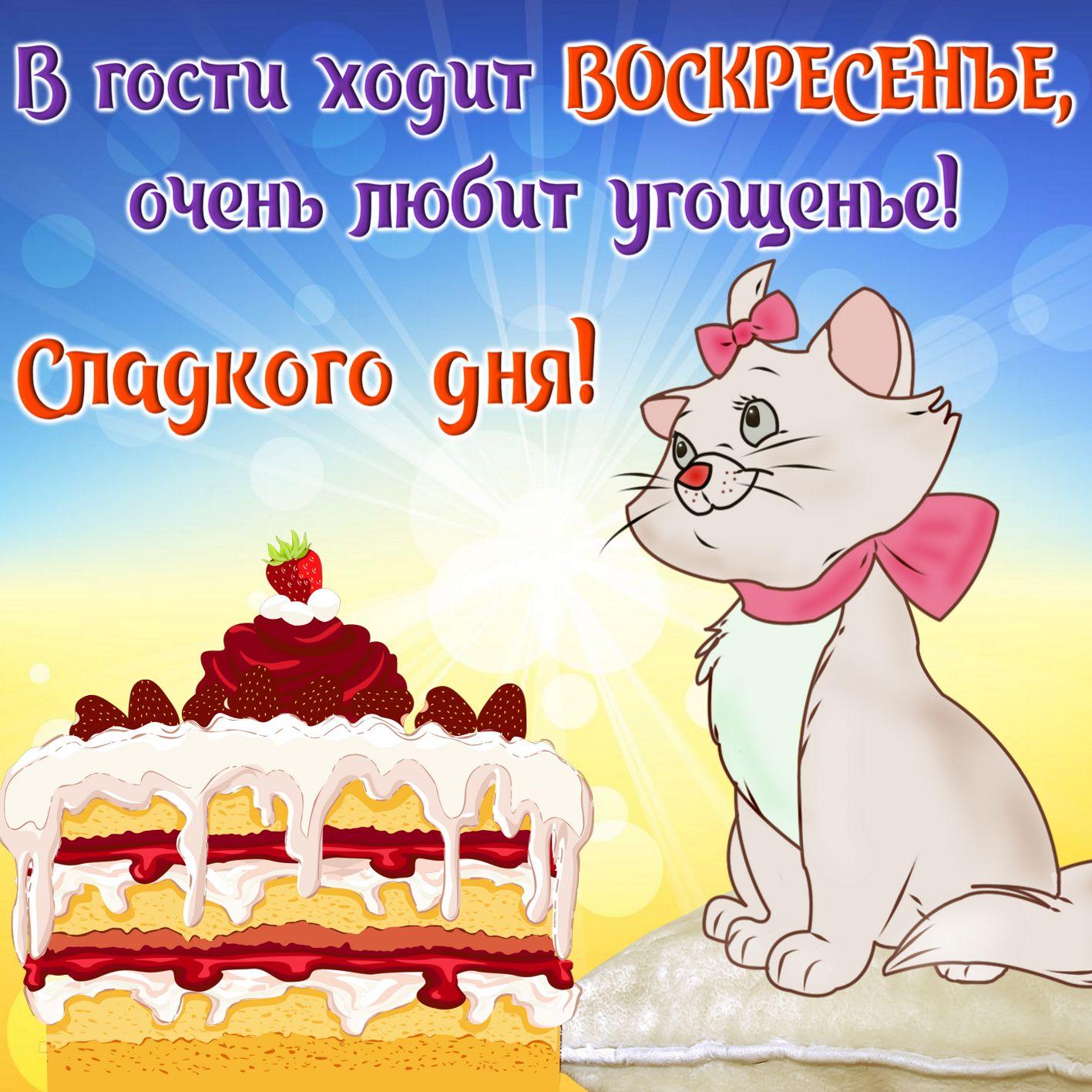 Открытка с забавным котиком и тортом на воскресенье