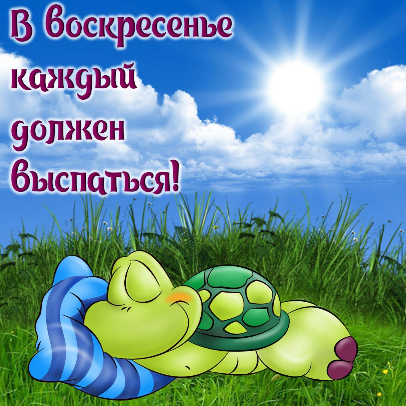 Открытка на воскресенье - мультяшная черепашка спящая на траве