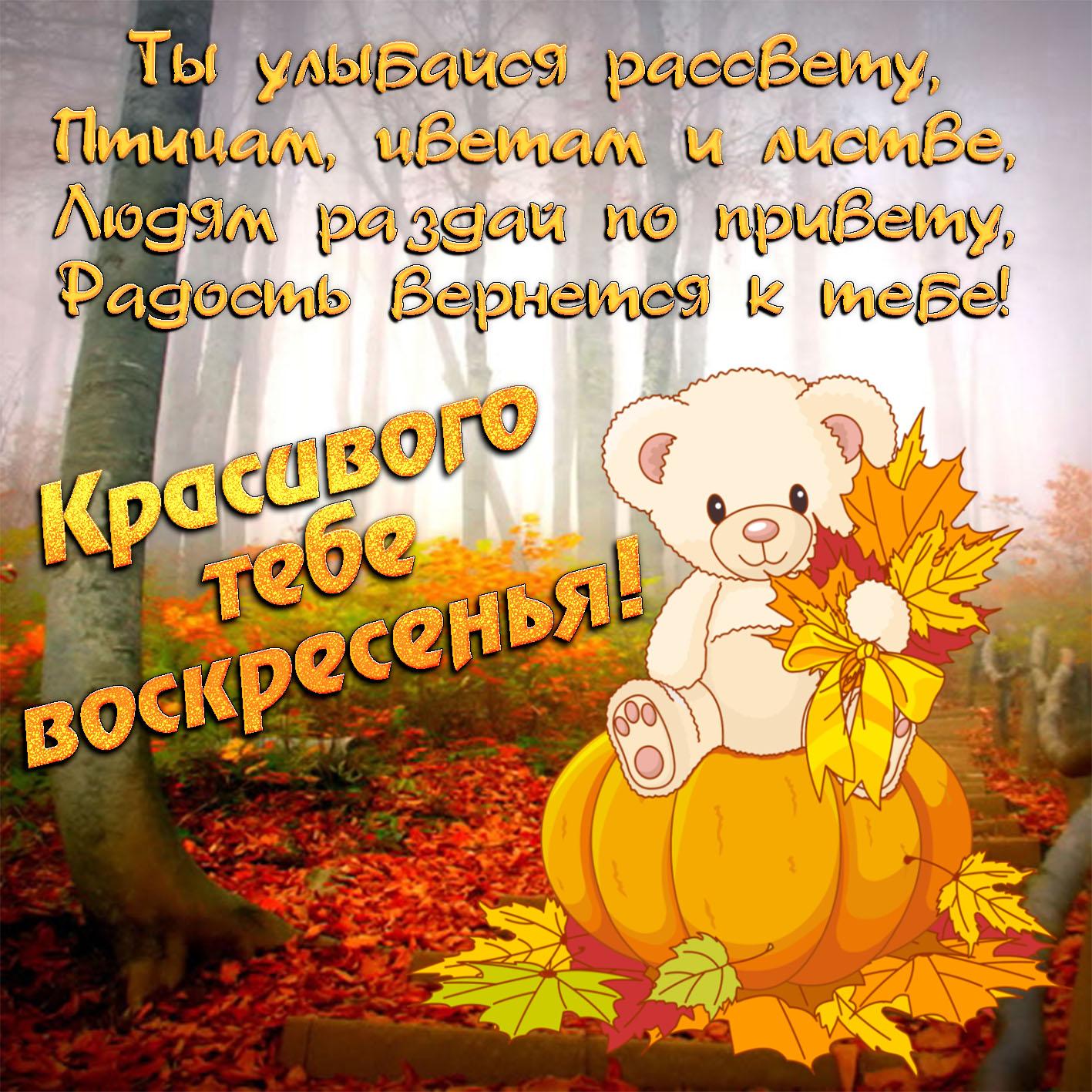 Поздравления в стихах с днем рождения гимназии в стихах чебурашек