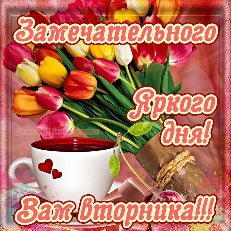 Открытка - милый букет тюльпанов и пожелание замечательного вторника
