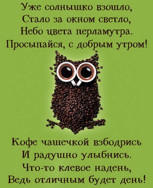 Сова из кофейных зернышек