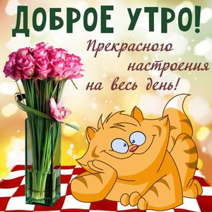 Забавный котик с букетом цветов