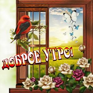 Красивая открытка с птичкой и бабочками