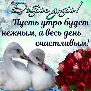 Картинка с птичками и ярким букетом на доброе утро