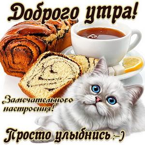 Открытка с милым котиком желающим доброго утра