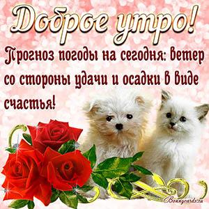 Пёсик и кошечка на открытке желают Вам доброго утра