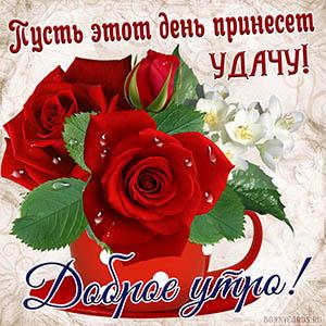 Картинка доброе утро с яркими красными розочками
