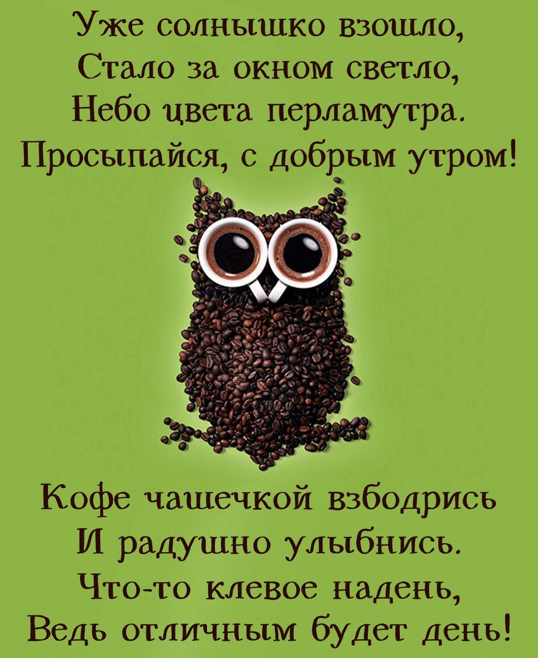 Открытка с добрым утром - сова из кофейных зернышек