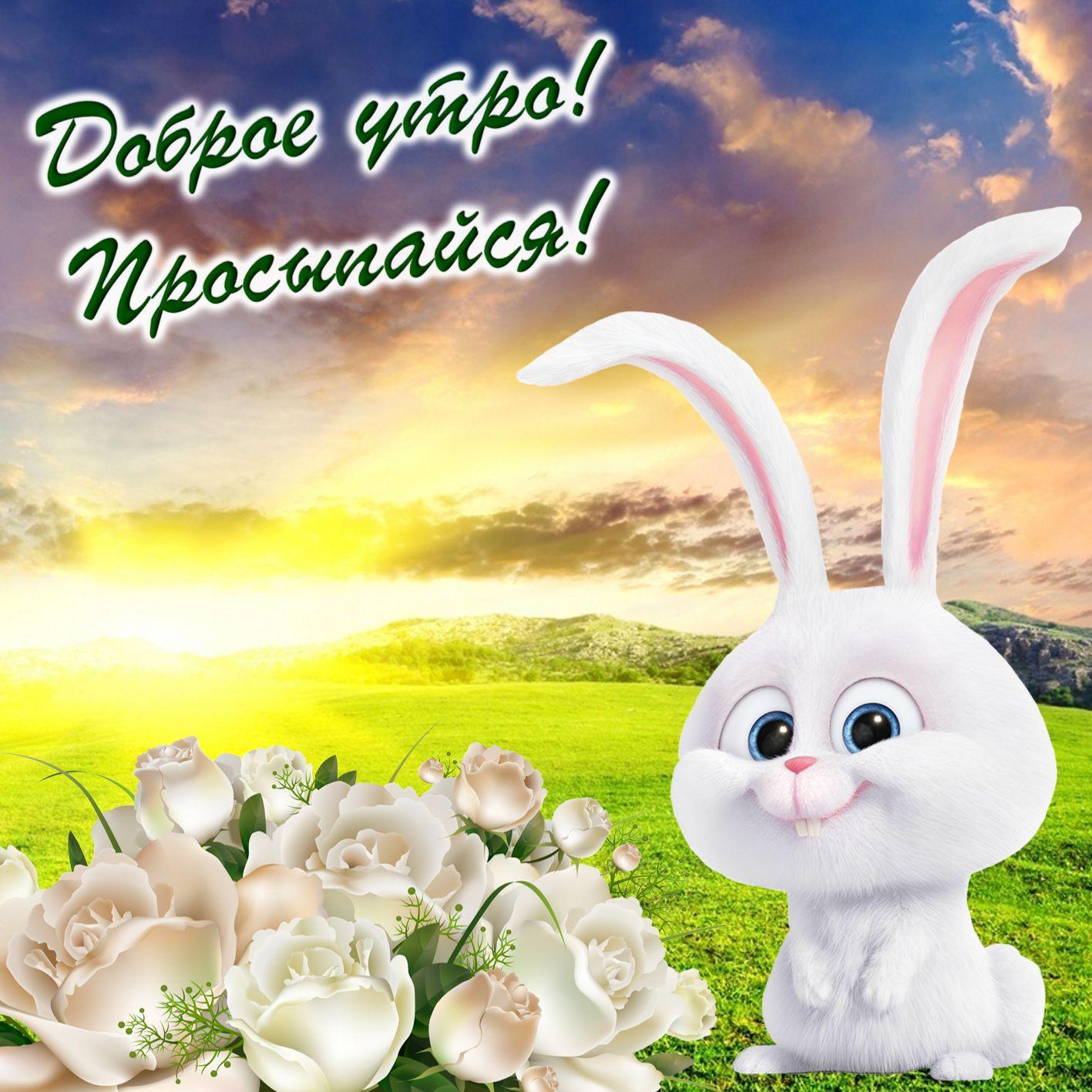 Открытка с весёлым кроликом и розами