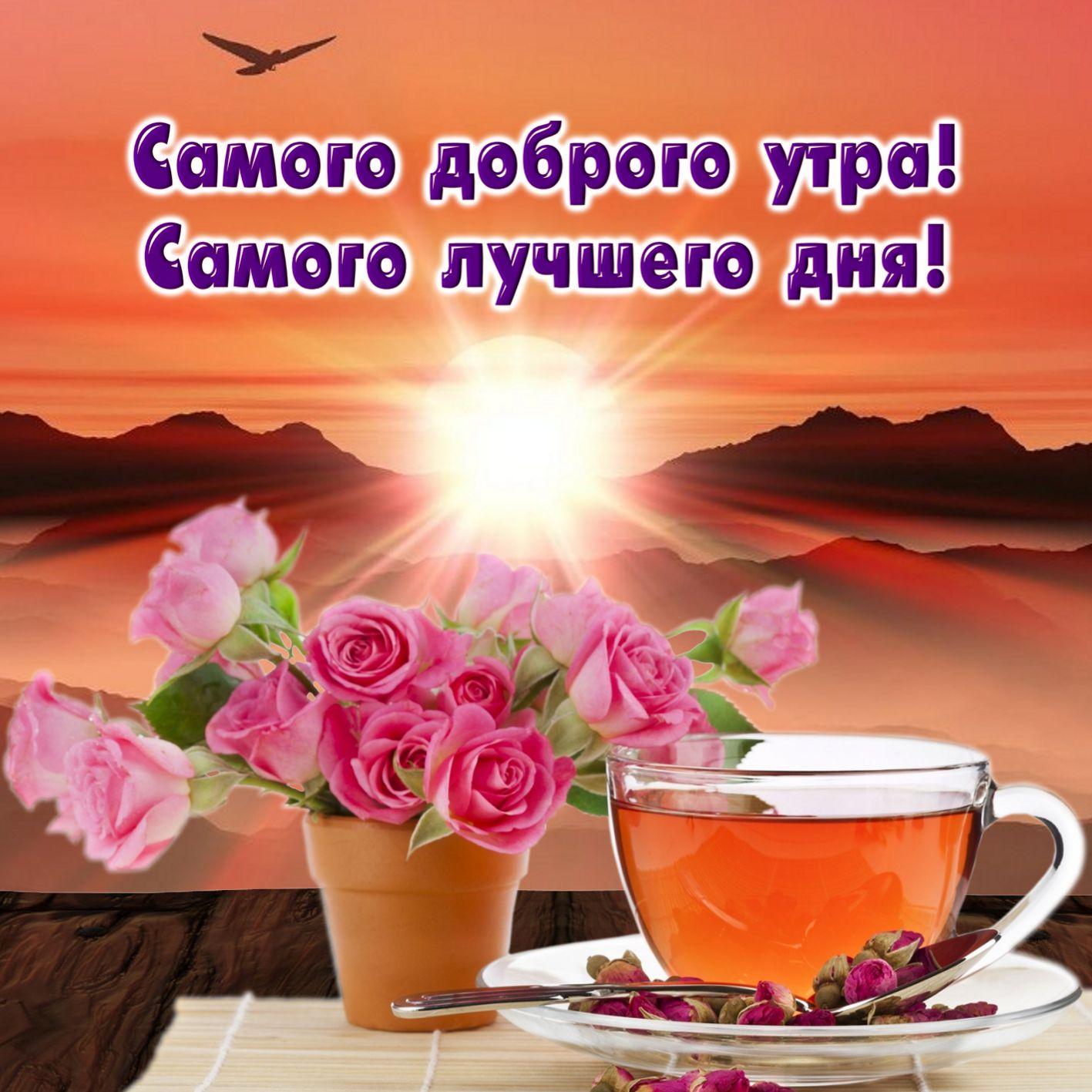 Поздравления днем, самая добрая открытка с добрым утром