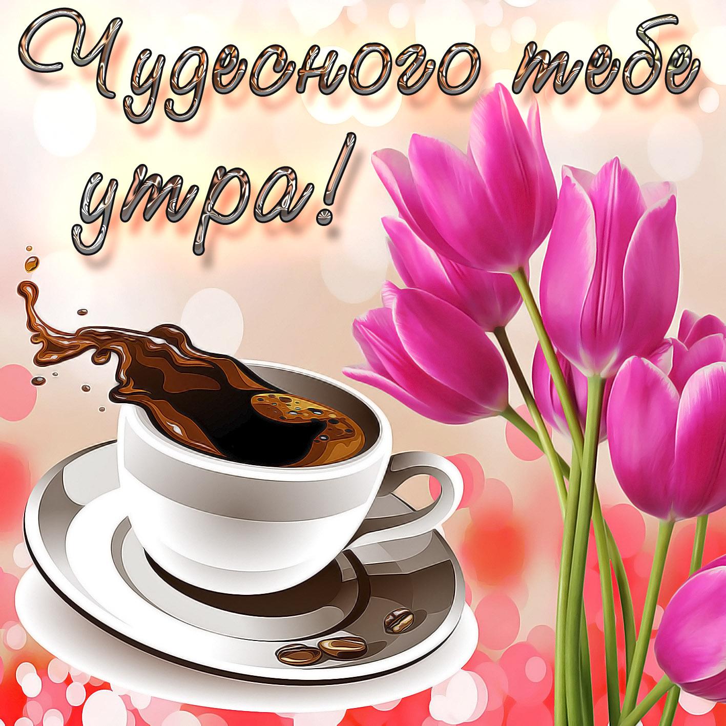 Николай доброе утро открытка