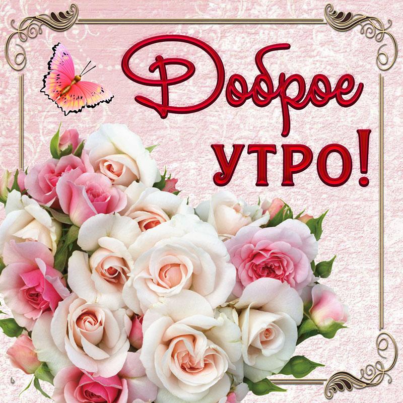 Открытка - красивый букет роз в рамочке для очень доброго утра
