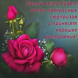 Открытка с пожеланием и красивой розой