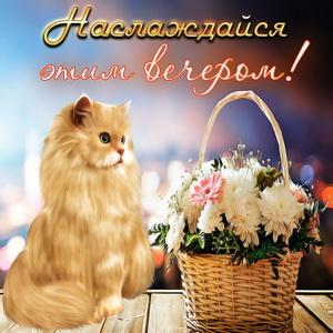 Красивый котик и корзина с цветами