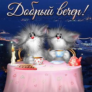 Два забавных котика пьют чай за столом