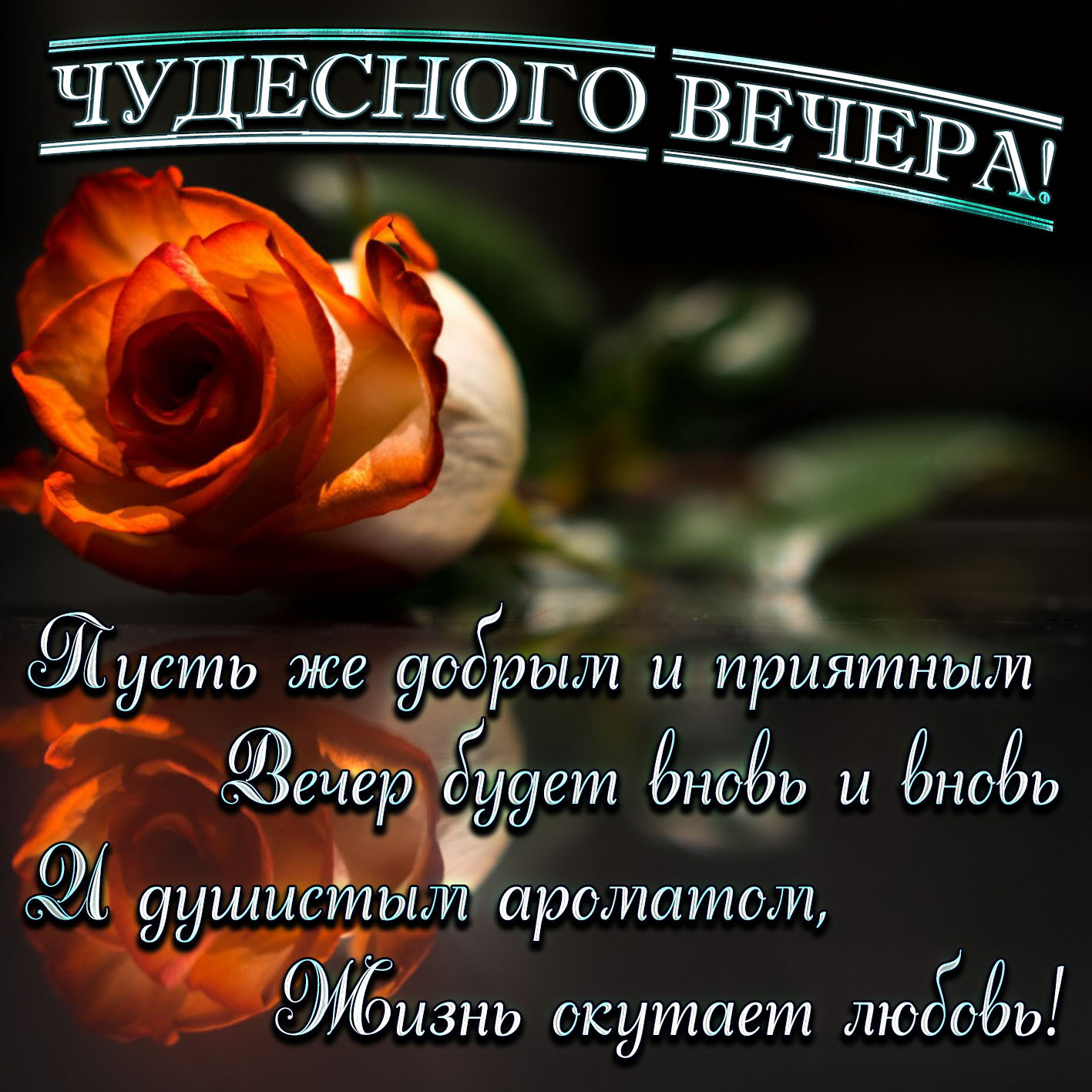 Открытка - красивое пожелание чудесного вечера и роза