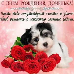 Милая собачка с букетом красных роз
