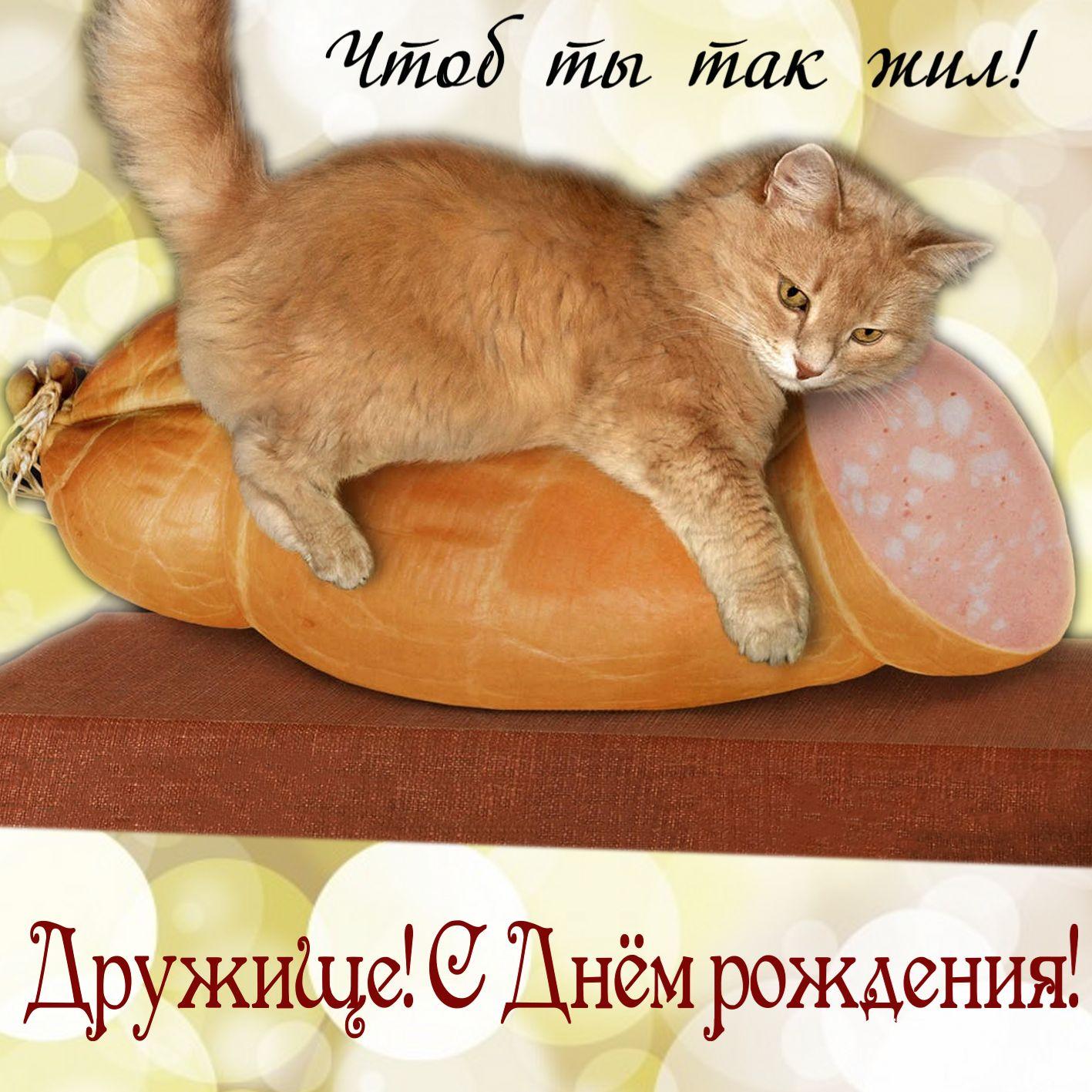 Забавная открытка с котом в обнимку с колбасой