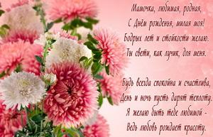 Красивое пожелание с полевыми цветами