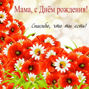 Полевые цветы на День рождения маме