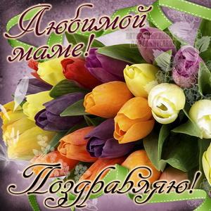 Открытка с яркими тюльпанами для любимой мамы