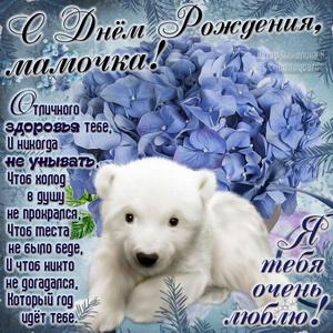Медвежонок поздравляет маму с Днём рождения