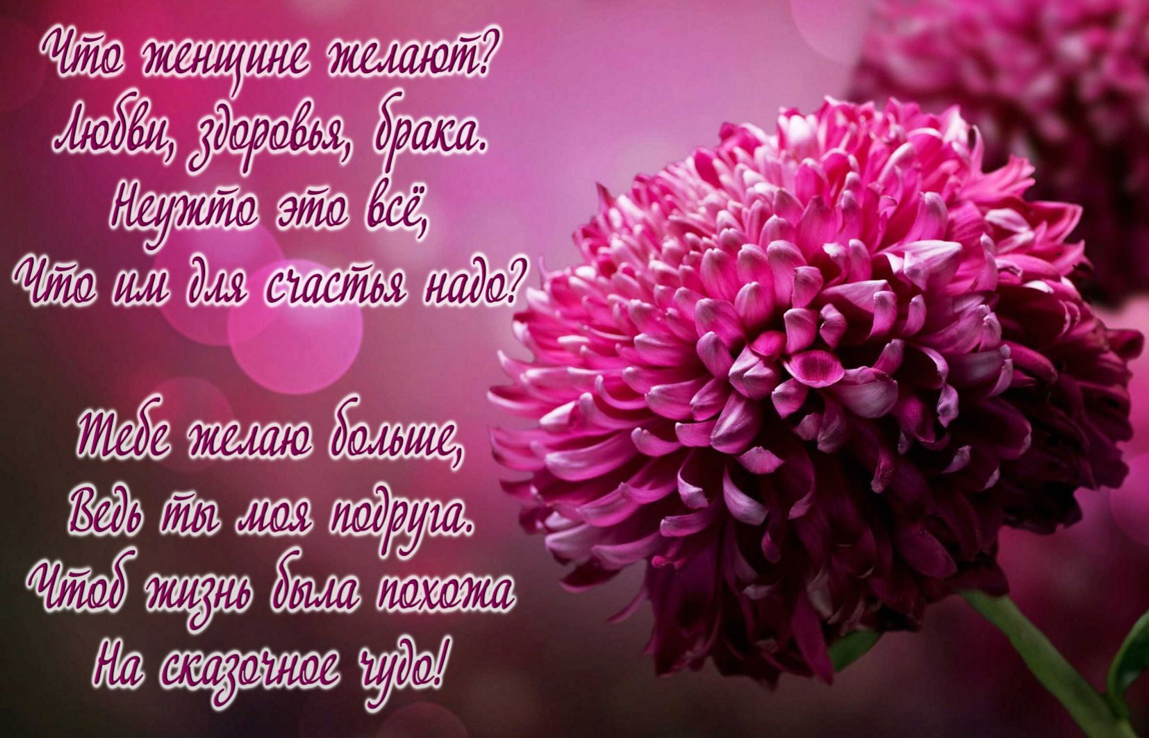 Открытка с Днём рождения подруге - красивый розовый цветок и пожелание
